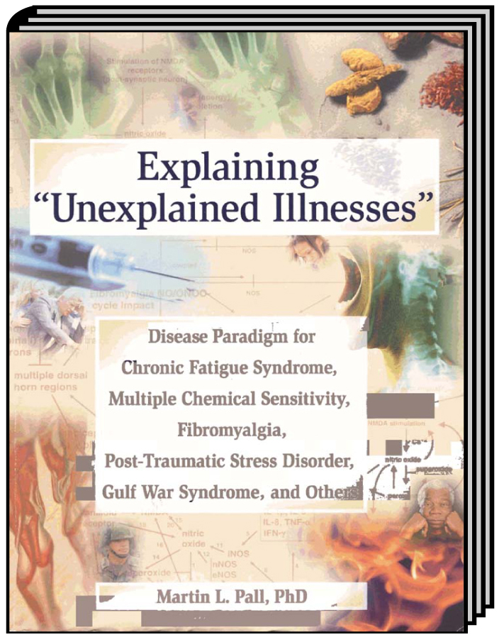 Explaining 'Unexplained Illnesses'